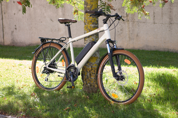 Alpha electric bike